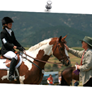 Hi BVEA members, CCC members, and fellow eventing enthusiasts As you all know, eventing is a labor of love so I am reaching out in search of volunteers to help with upcoming Abbe Ranch happenings.  The riding clinic is May 10-13 and the horse trials are June 22-24, 2018. In order to prepare the grounds for the riding clinic and the horse trials, we are in search of volunteers for a few work days- one in the next month (likely April 29 or weekend of May 5-6) and another in June (weekend of June 9-10).  We are in particular need of anyone with tractors and mowers, chain saws, tree trimming shears, etc.  We will be looking to help mow and tame some overgrown trails!  If you are interested and available to join us for a work day at Abbe Ranch, please let me know by emailing me at erinkcontino@gmail.com Of course we will also be in need of volunteers for a variety of things during the horse trials so if that is something you are interested let me know and I will forward you to the organizers and/or volunteer coordinator. For info on the riding clinic, horse trials, and/or updates please visit www.abberanchevents.com or visit our Facebook page- Abbe Ranch Horse Trials. Also a huge thank you to all those people already busy volunteering for this and all of the other shows, clinics, etc in Area IX!  It takes a village... Thank you- happy riding! Erin Contino erinkcontino@gmail.com